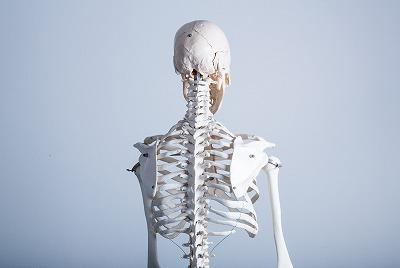 脊柱管狭窄症と訪問鍼灸【一宮市と稲沢市】